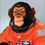 Ground Control To Major Tamarin – Iran to send a monkey into space?